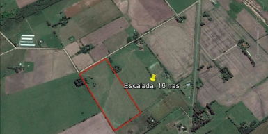 Escalada, Prov. de Buenos Aires, 16 has