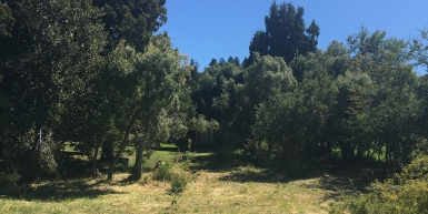 Lote en Bariloche: Barrio Privado Bandurrias